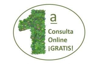 1a consulta online gratuita - promoción